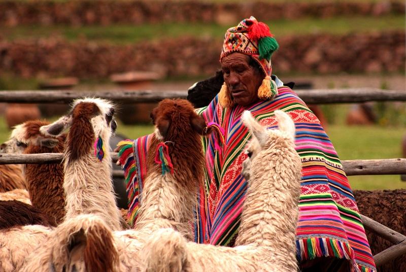 Culture Precolombiane